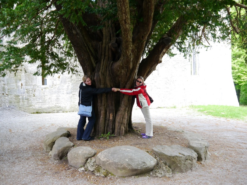 Outside the Abbey - Renee and I demonstrating how huge this tree was!