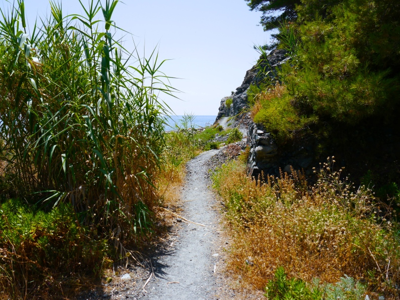 A lot of the sections of the trails looked like this, so we only did a mini-hike around Monterosso.
