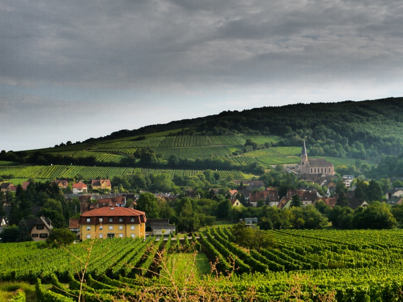 The Alsace WIne Route…it all pretty much looks like this!