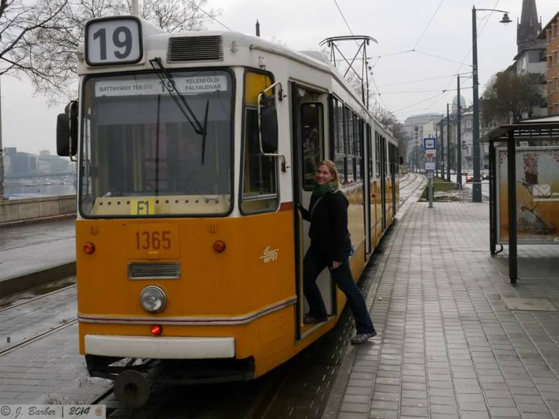 The above ground trams were also adorable!