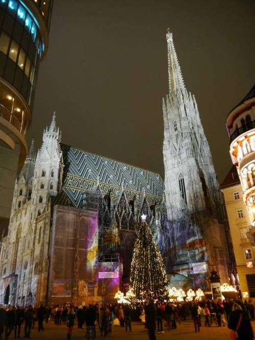 The Stephansdom in the middle of Vienna