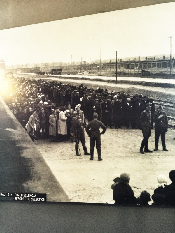 The victims lining up on the platform after leaving the cattle cars.