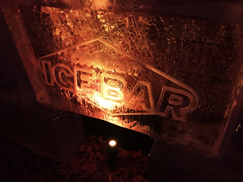Just in case you forgot it was an ice bar! :-)