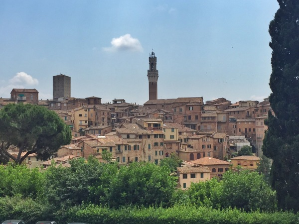 View of Siena from San Domenico.
