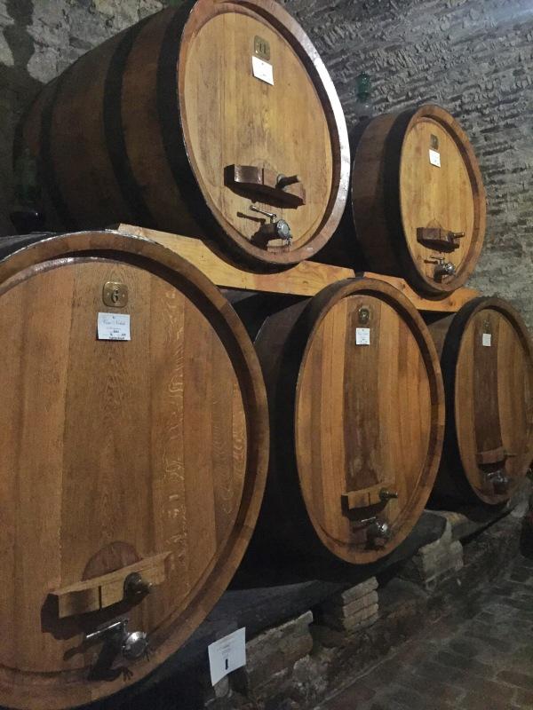 Touring the wine cellar at Cantina Contuzzi