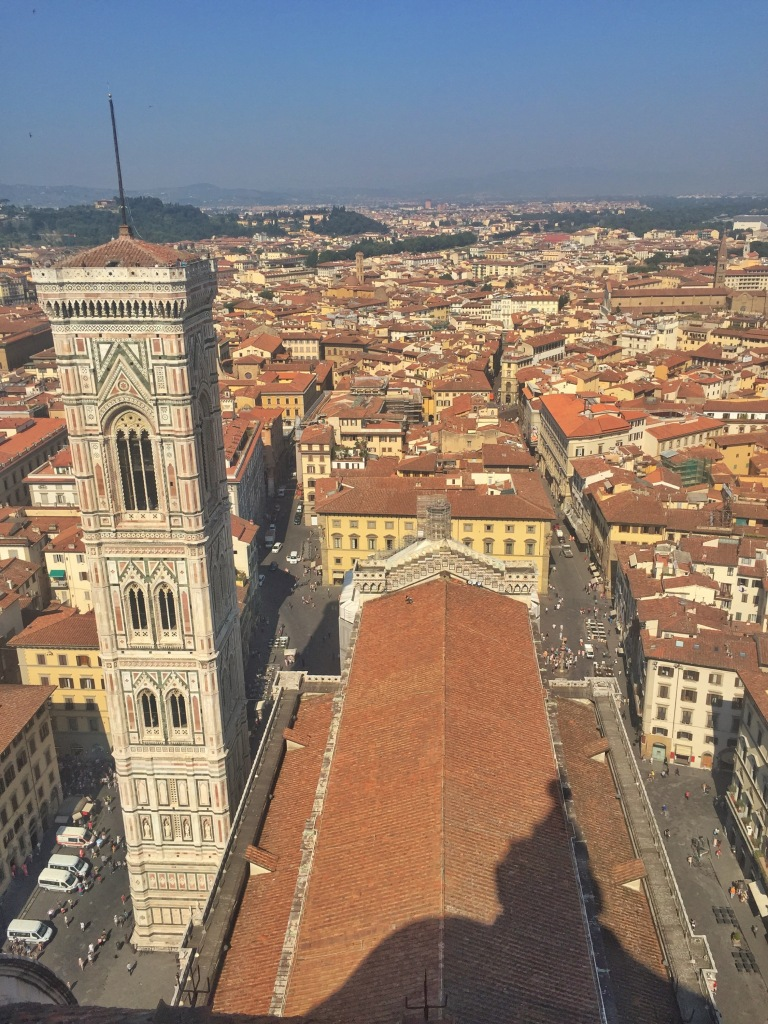 View from the top! So worth the climb!