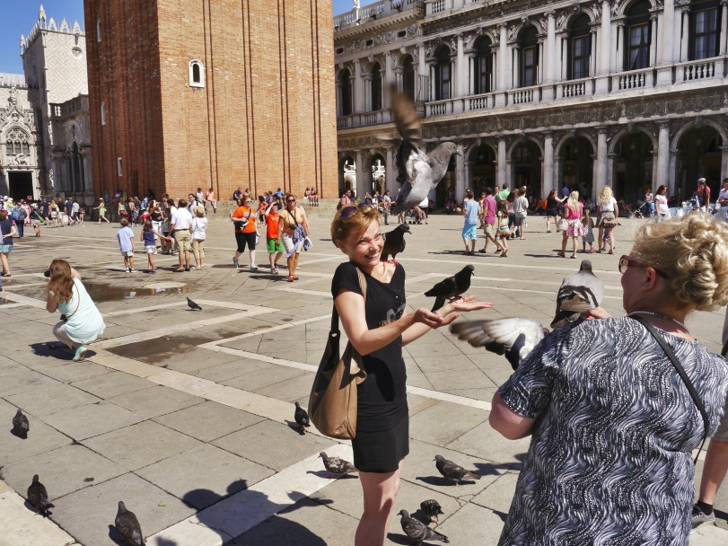 San Marco is famous for the pigeons and I don't get it! These are flying rats people! Why are you letting them walk all over you??
